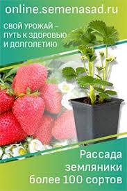 семена агроуспех ипомея скарлет охара о 27214 1 г