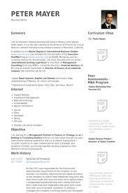 director of finance resume samples   visualcv resume samples databasedirector of finance resume samples