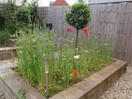 Small Picture Garden Design Garden Design with Mundy Wildflower Garden Cornell