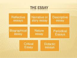 buy original essays online   essay editing and undergrad english  buy original essays online   essay editing and undergrad english help   craigslist