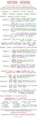 best ideas about mitosis cell biology genetics mitosis and meiosis mcat cheat sheet study guide learn what happens in each step