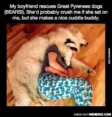 That is a nice cuddle buddy - MemePix via Relatably.com