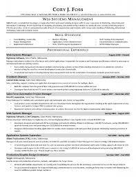 marketing director resume objective cipanewsletter resume examples manager resume objective examples vice