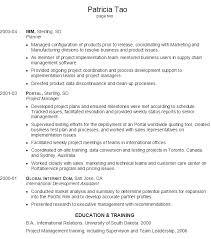 Resume Writing Objective Statement