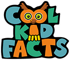 <b>Cactus Plants</b> | Cool Kid Facts