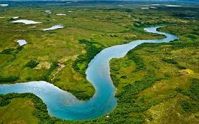 Image result for rivers