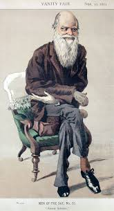 charles darwin s theory non constancy of species branching english caricature of charles darwin from vanity fair magazine caption read