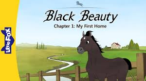 black beauty my first home level by little fox black beauty 1 my first home level 6 by little fox