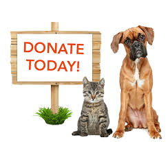 Image result for donate for rescue pets
