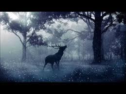 Dźwięki Natury (Muzyka Relaksacyjna)