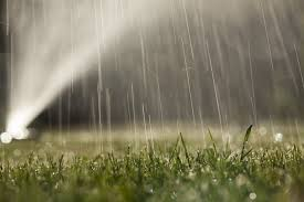 Image result for lawn watering pictures