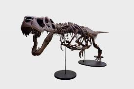 The Big Money Behind Big Dinosaurs: Meet Victoria the Largest <b>T</b> ...
