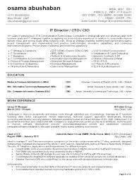 cio sample resume template cio sample resume