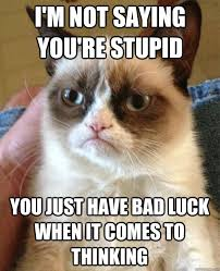 I'M Not Saying You'Re Stupid Cat Meme - Cat Planet | Cat Planet via Relatably.com