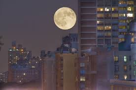 Image result for images for full moon over city