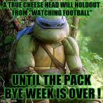 Sad Ninja Turtle Meme Generator - Imgflip via Relatably.com