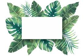 <b>Palm Leaf</b> Vectors, Photos and PSD files | Free Download