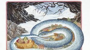 Resultado de imagen para imagenes de la serpiente del horóscopo chino