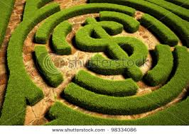 Image result for financial maze