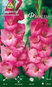 АПД <b>Гладиолус</b> Фиделио / A30205 (10шт) Семена цветов купить ...