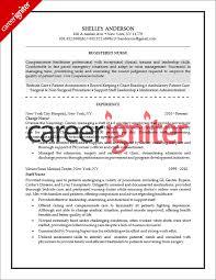nurse resume sample   career igniternurse resume sample