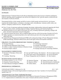professional resume template for excel  pdf and wordscore skills resume template