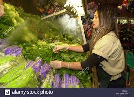 oct 02 2006 alamo ca usa safeway produce clerk irene del oct 02 2006 alamo ca usa safeway produce clerk irene del socorro cleans and stocks spinach and other greens at the alamo calif safeway store on