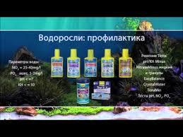 <b>Борьба</b> с водорослями в <b>аквариуме</b> - YouTube