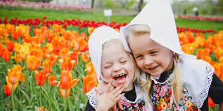 Image result for tulip time holland mi images