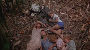 Image result for the mosquito coast
