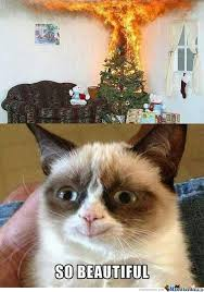 Angry Cat Is Not Always Mad by darainshine - Meme Center via Relatably.com