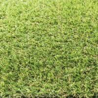 <b>Искусственная</b> трава - купить в Москве и России по низкой цене ...