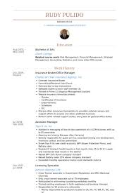 insurance broker resume samples   visualcv resume samples databaseinsurance broker office manager resume samples