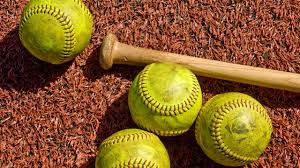 Image result for evansville central high school softball