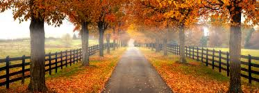 Image result for Virginia photos