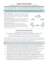 digital marketing resume info robert c pettit digital resume digital marketing manager cv