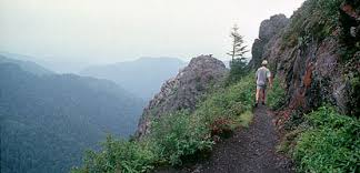 <b>Hiking</b> - Great Smoky Mountains National Park (U.S. National Park ...