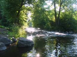 Image result for waupaca river