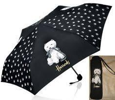 Ένα Westie  στη βροχή...
