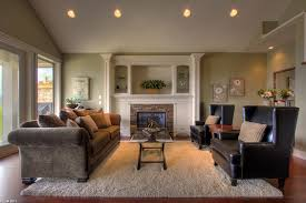 Area Rugs In Living Rooms