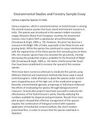 environmental studies essay  comfuturobr orgenvironmental studies and forestry sample essayenvironmental studies and forestry sample essay cytisus scoparius species in