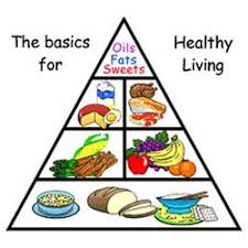 food pyramid  food pyramid for kids and healthy food on pinterest
