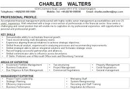 finance manager cv template word finance investment manager cv