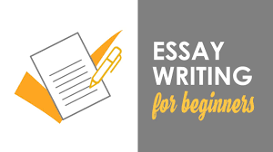 essay writing for beginners essay writing for beginners