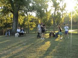 Είναι τα πάρκα σκύλων  ασφαλή;