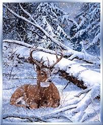 """Résultat de recherche d'images pour """"gifs animés c'est l'hiver"""""""