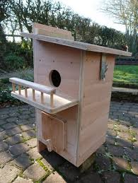 Squirrel House Plans Nest Box   Free Online Image House Plans    Flying Squirrel Nesting Boxes on squirrel house plans nest box