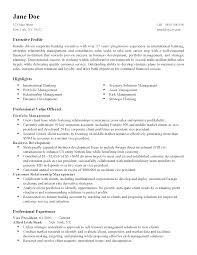 professional international finance director templates to showcase resume templates international finance director