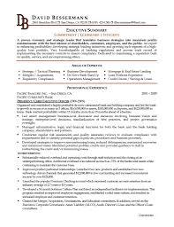executive summary resume example getessay biz executive c level executive resume by xiuliliaofz in executive summary resume