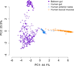 social networks predict gut microbiome composition in wild baboons figure 1 figure supplement 5